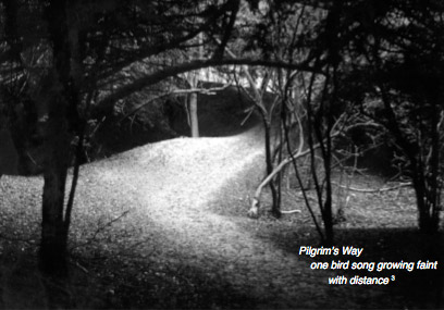 pilgrims way an essay in recollection